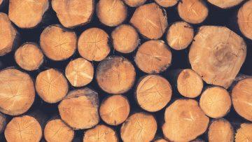 China Log Imports Set Record